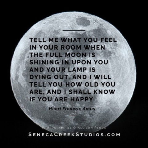 SenecaCreekStudios.com | Fine Art Landscape and Nature Photograph Prints and Portraits | Based in Historic Downtown Laramie, Wyoming | Full moon quote by Henri Frederic Amiel | 2017-11-02 Full Moon Quote Square Posts_7